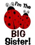 I'm The BIG Sister! Ladybug