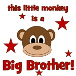 Little Monkey Is Big Brother