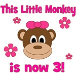This Little Monkey is 3!