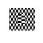 Illusion #1