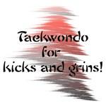 Taekwondo Kicks and Grins