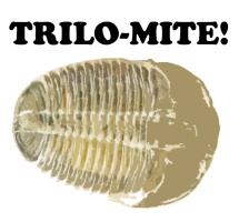 Trilo-mite!