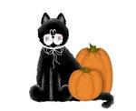 Black Cat w/Pumpkins 2