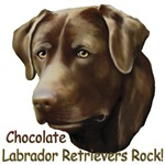 Chocolate Labs Rock