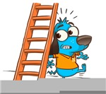 Superstitious Doggy - Walking under a Ladder