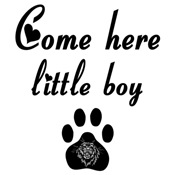 Cougar Sayings: Come Here Little Boy