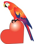 Parrot Luv