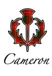 Clan Cameron Thistle