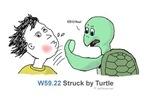 W59.22 Struck by turtle