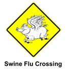 Swine Flu Humor