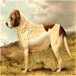 White St. Bernard 1880 Digitally Remastered