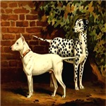 Dalmation & Bull-terrier 1880 Digitally Remastered