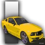 MustangGT-RWB
