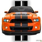 New Mustang GT Orange