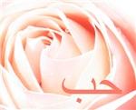 Arabic Love Rose