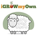 iGrowMyOwn: Sheep