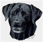 Meaghan, Black Labrador