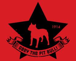 Pit Bull Star Icon
