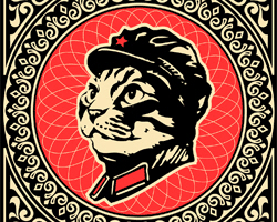 Leader Chairman Meow