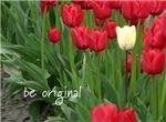 Be original (tulips)