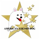 American Eskimo Stars