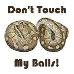 Don't Touch My Balls