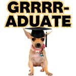 Graduation Chihuahua
