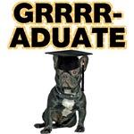 Graduation French Bulldog