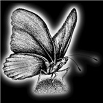 Neon Butterfly Black T-Shirts
