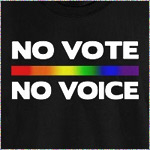 No Vote No Voice (Rainbow)
