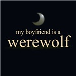 My Boyfriend is a Werewolf