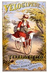 Velocipede Tobacco 1874