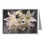 ...Lilies...