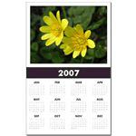 ...Wild Flower 05...