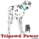 Tripawd Power (Moose & Maggie)