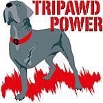 Tripawd Power (Bellona)
