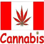 Cannabis Tshirts