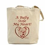 A Bully Stole My Heart Back