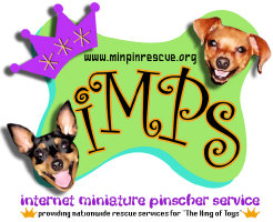 IMPS Smiley Dogs