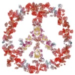 Attraction Flower Peace
