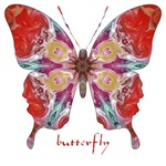 Attraction Butterfly