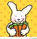 bunny n' carrots