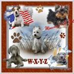 DOG BREED W-Z