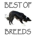 Best of Breeds