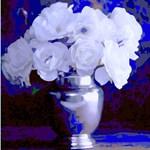 White Roses in Silver Vase