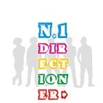 n.1 Directioner