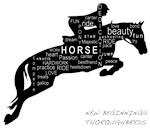 NBT Jumping Horse logo gear