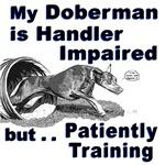 Doberman Pinscher Agility