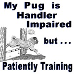 Pug Agility