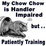 Chow Chow Agility